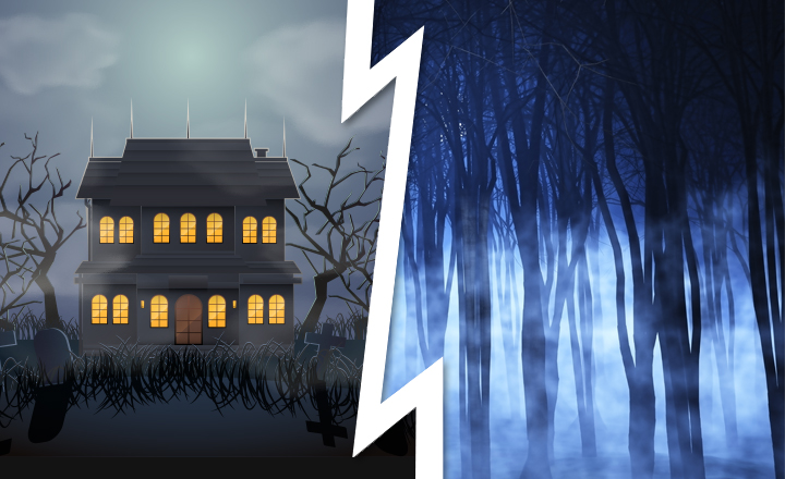 Would You Rather Stay in Haunted House or Dark Forest