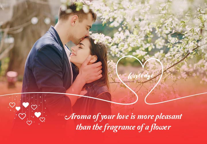 Aroma of your love is more pleasant than the fragrance of a flower