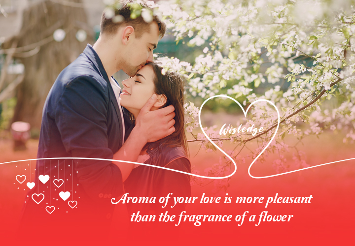 Soothing love quotes by completing your beloved