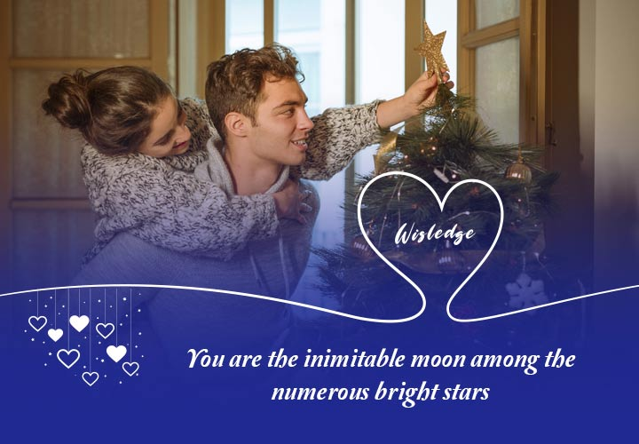 You are the inimitable moon among the numerous bright stars.